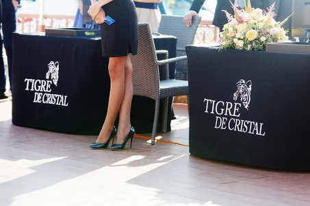 казино тигр де кристал